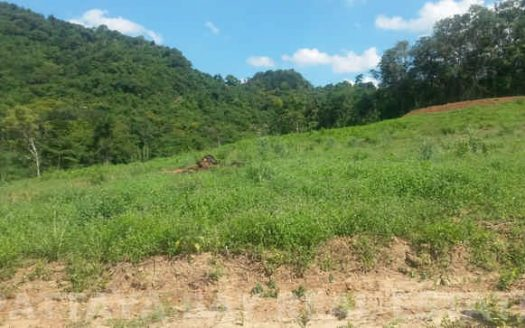 Land For Sale Silverlake Bang Saray, Pattaya Bay Real Estate