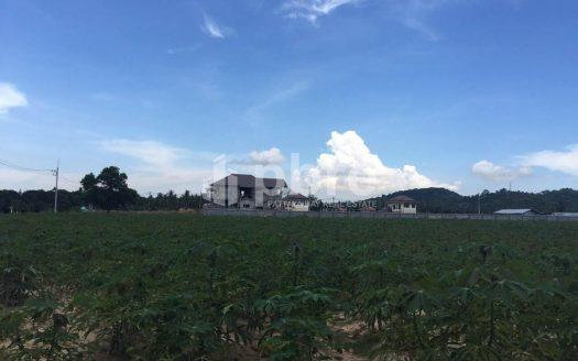 ขายที่ดินแปลงสวย 2ไร่ บางเสร่, Pattaya Bay Real Estate