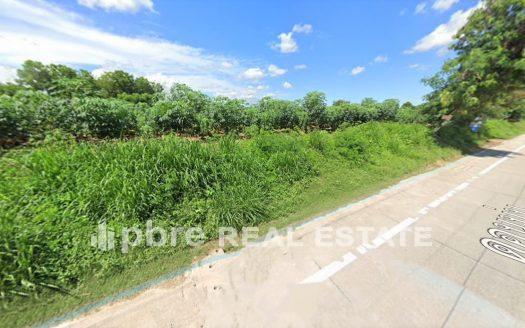 ขายที่ดินแปลงสวย 11 ไร่ 3 งาน ศรีราชา ชลบุรี, Pattaya Bay Real Estate
